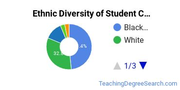 Student Counseling Majors in DC Ethnic Diversity Statistics