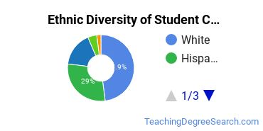 Student Counseling Majors in FL Ethnic Diversity Statistics