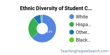 Student Counseling Majors in ID Ethnic Diversity Statistics