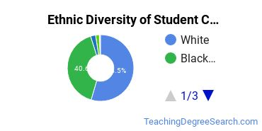 Student Counseling Majors in MS Ethnic Diversity Statistics