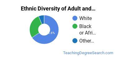 Adult & Continuing Education Majors in AR Ethnic Diversity Statistics