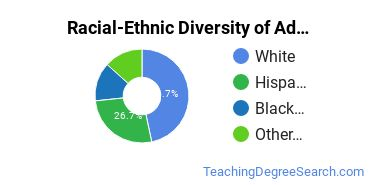 Racial-Ethnic Diversity of Adult and Continuing Ed Associate's Degree Students
