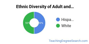 Adult & Continuing Education Majors in CA Ethnic Diversity Statistics