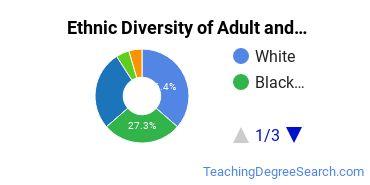 Adult & Continuing Education Majors in FL Ethnic Diversity Statistics