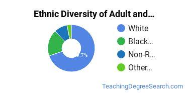 Adult & Continuing Education Majors in GA Ethnic Diversity Statistics