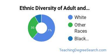 Adult & Continuing Education Majors in IA Ethnic Diversity Statistics