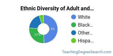 Adult & Continuing Education Majors in MN Ethnic Diversity Statistics
