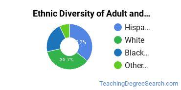 Adult & Continuing Education Majors in MO Ethnic Diversity Statistics