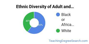 Adult & Continuing Education Majors in NV Ethnic Diversity Statistics