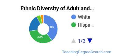 Adult & Continuing Education Majors in TX Ethnic Diversity Statistics