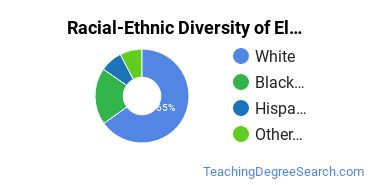 Racial-Ethnic Diversity of Elementary Teaching Basic Certificate Students
