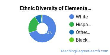 Elementary Education Majors in CO Ethnic Diversity Statistics