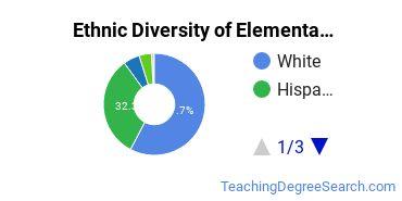 Elementary Education Majors in TX Ethnic Diversity Statistics