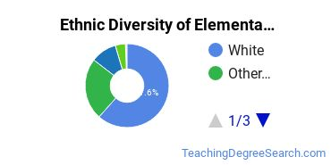 Elementary Education Majors in VA Ethnic Diversity Statistics