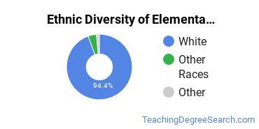 Elementary Education Majors in WV Ethnic Diversity Statistics