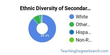 Secondary Education Majors in ME Ethnic Diversity Statistics