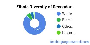 Secondary Education Majors in SC Ethnic Diversity Statistics