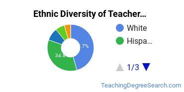 Teacher Development & Methodology Majors in NM Ethnic Diversity Statistics