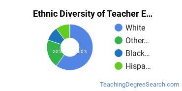 Teacher Education Majors in VT Ethnic Diversity Statistics
