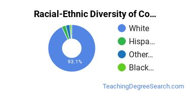 Racial-Ethnic Diversity of Computer Teacher Education Students with Bachelor's Degrees