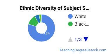 Teacher Education Subject Specific Majors in SC Ethnic Diversity Statistics