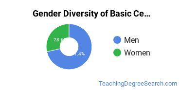 Gender Diversity of Basic Certificates in Technology Education