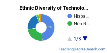 Technology Education Majors in CA Ethnic Diversity Statistics