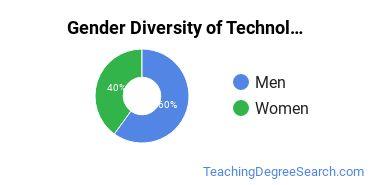 Technology Education Majors in CT Gender Diversity Statistics