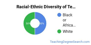 Racial-Ethnic Diversity of Technology Education Doctor's Degree Students