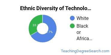 Technology Education Majors in GA Ethnic Diversity Statistics