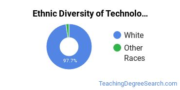 Technology Education Majors in ND Ethnic Diversity Statistics