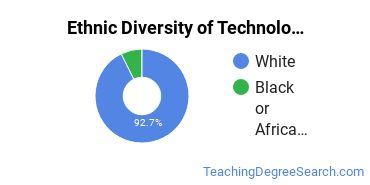 Technology Education Majors in PA Ethnic Diversity Statistics