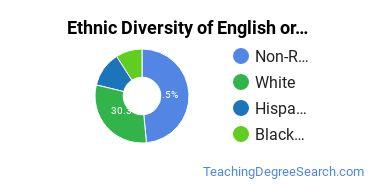 Teaching English or French Majors in DE Ethnic Diversity Statistics