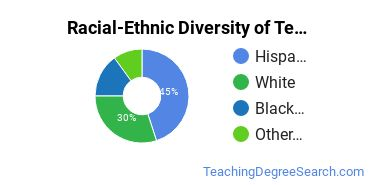 Racial-Ethnic Diversity of Teaching English or French as a Second or Foreign Language, Other Students with Bachelor's Degrees