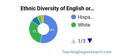 Teaching English or French Majors in TX Ethnic Diversity Statistics